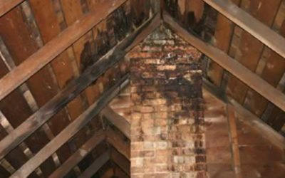 SIGNS YOUR ROOF SUSTAINED WATER DAMAGE